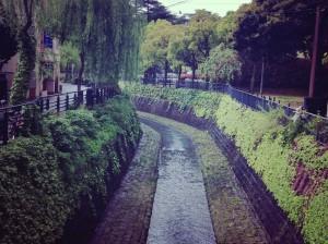 悠久の川©日本縦断ブログ