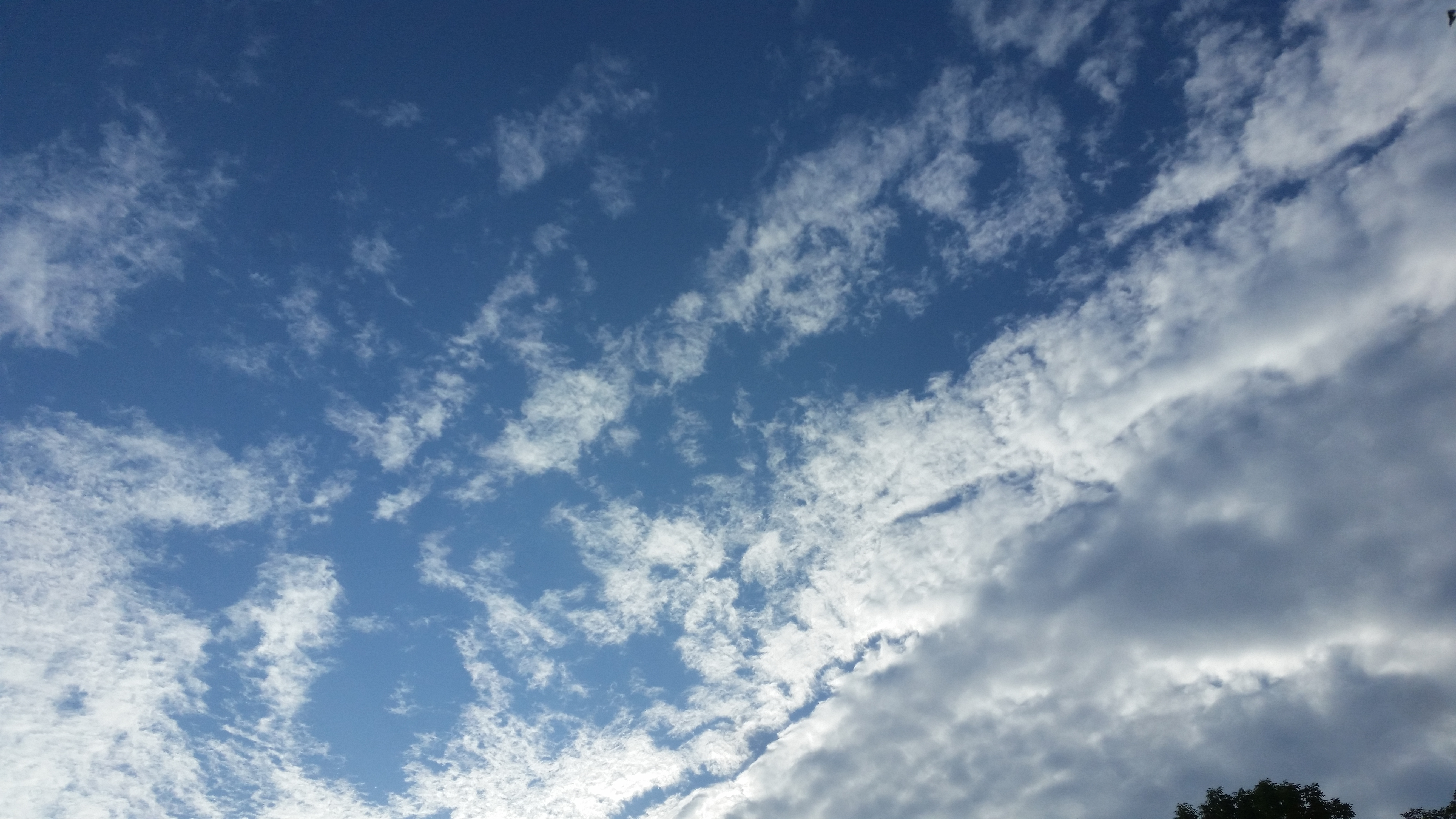 愚痴らずに祈って起きた極的な御働き1/3
