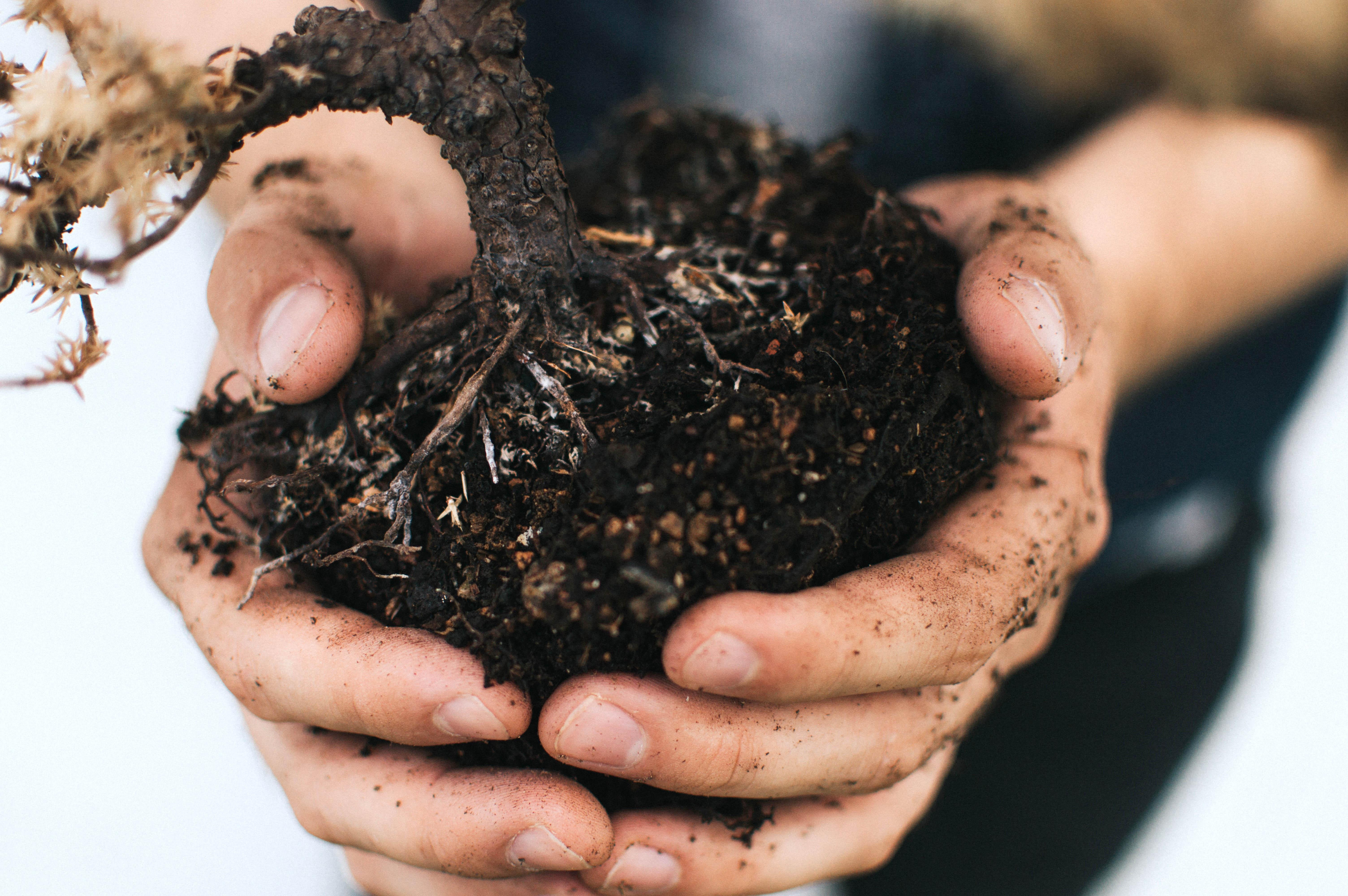 自分を作ること、空っぽにすること~農学部環境問題専攻