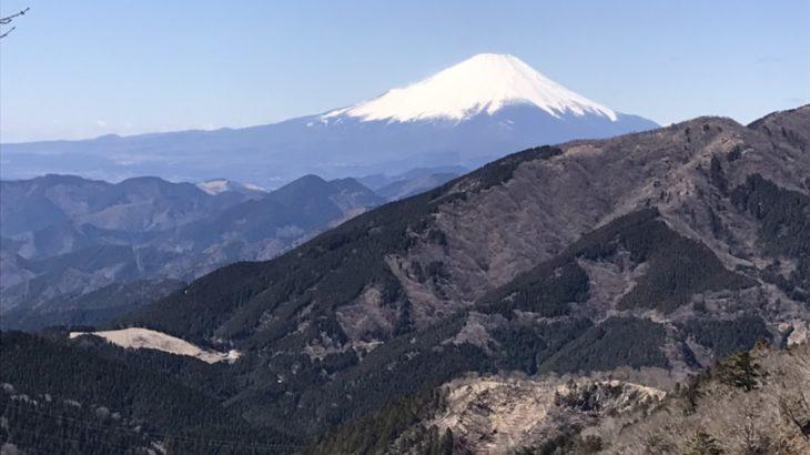 山登りに行ってきました!