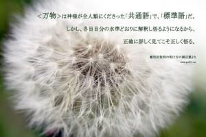 20140910_404037